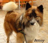 14_Benny